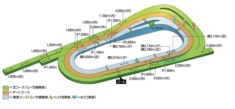 京都競馬場の立体コース図
