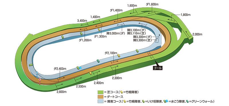 東京競馬場のコース立体図