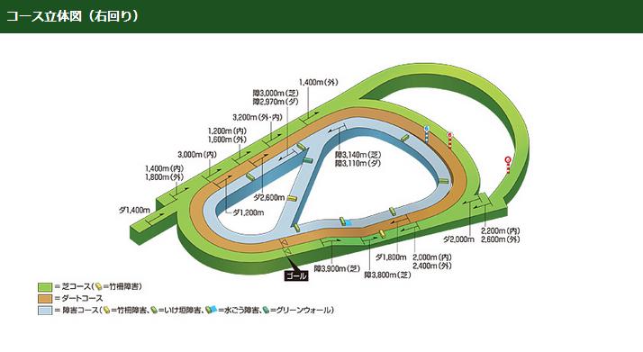 阪神競馬場のコース立体図