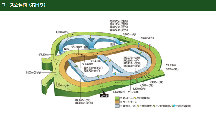 中山競馬場のコース立体図