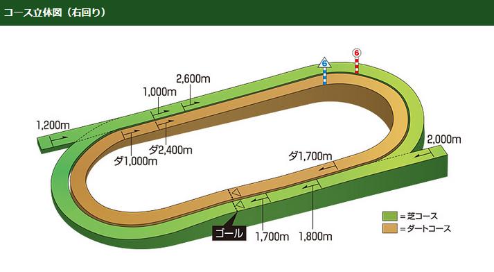 函館競馬場のコース立体図
